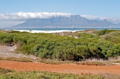 Western Cape Road Tour